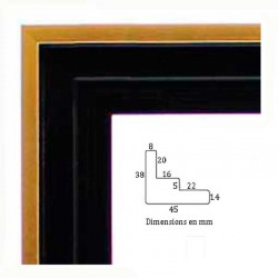 Cadre caisse américaine noir filet or