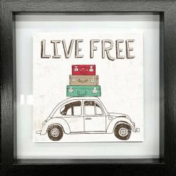 """"""" Live free """", Les Mini's..."""