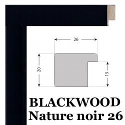 Blackwood 26 nature Nielsen