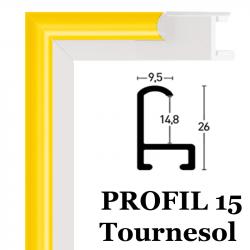 Profil 15 couleur jaune tournesol 118