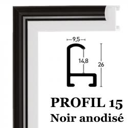 profil 15 couleur noir anodisé 016