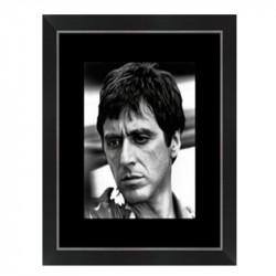 """ SCARFACE, Al Pacino..."